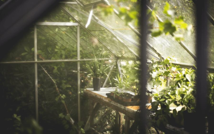 https://growandstyle.de/growroom/growboxen.html